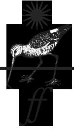 Picto oiseau